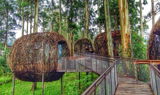 6. Dusun Bambu Lembang