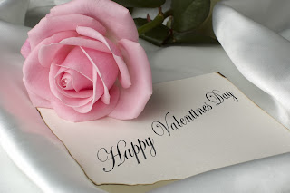 Pink rose on a Happy valentines day message