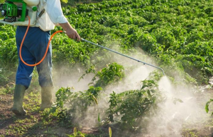 Glifosato usado na agricultura