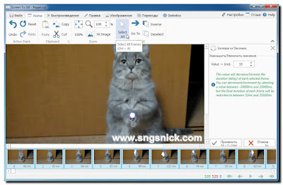 ScreenToGif 2.7.3 - Нажимаем Select All