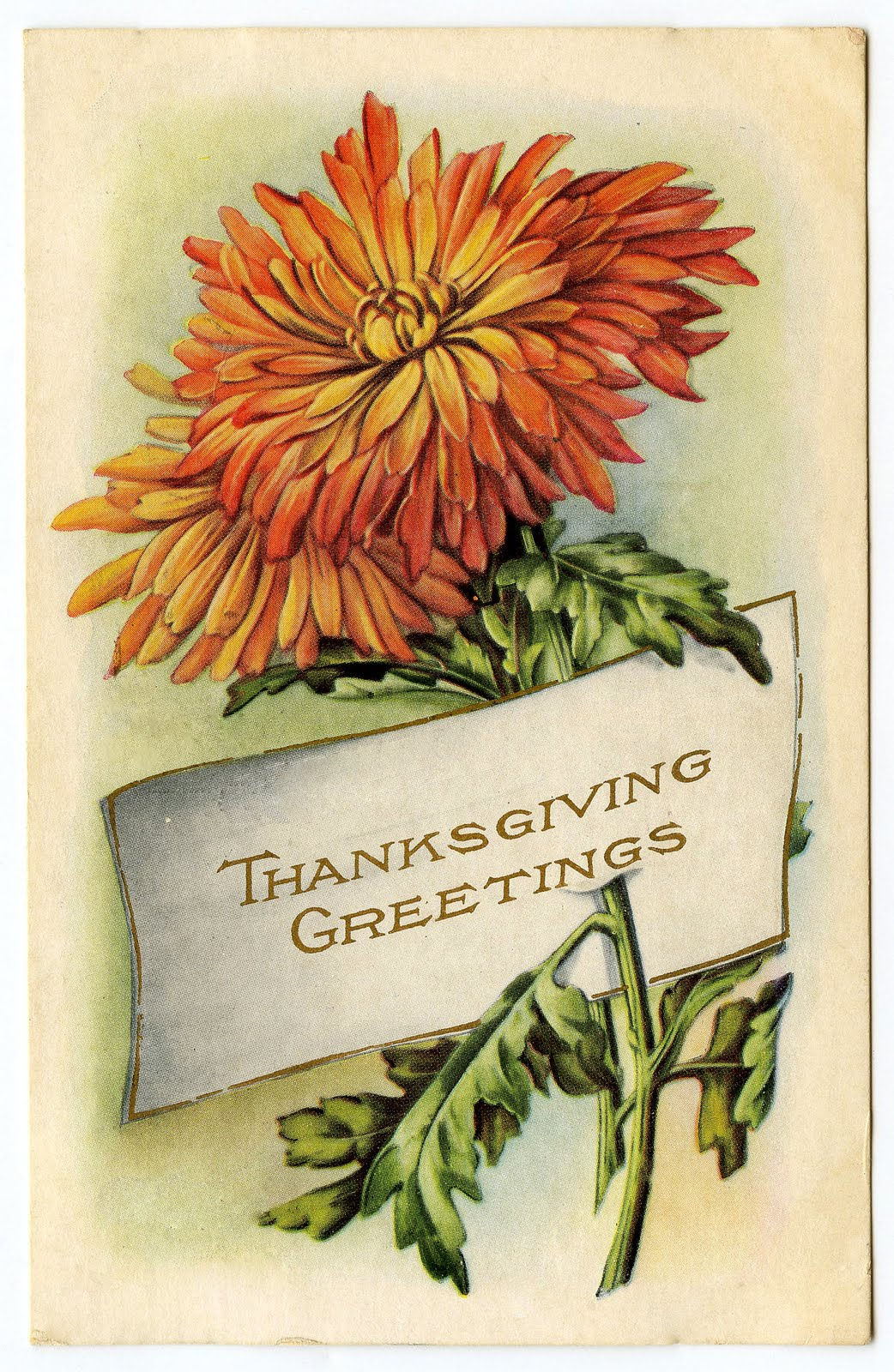 Spreading the message of gratitude to thanksgiving clipart ...