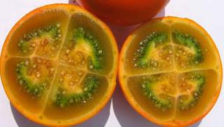 fruta lulo