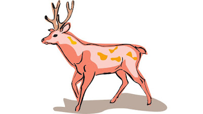 10 Lines About Deer in Hindi