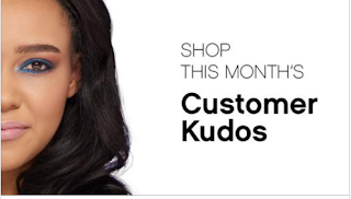 Lauren's Kudo's Virtual Party
