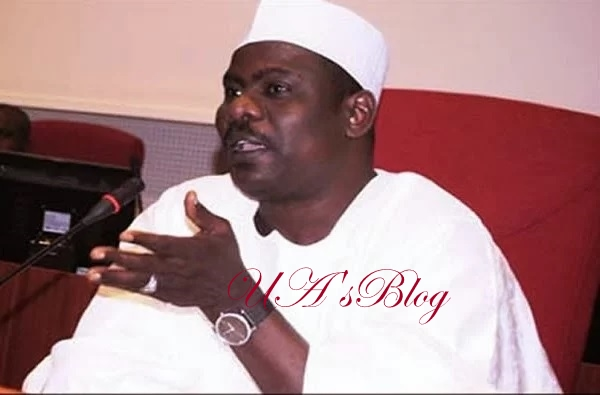 If you criticize Buhari in Wuse Market, you will not come out alive – Senator Ndume