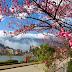 Tháng 3 nên đi du lịch khắp miền Việt Nam