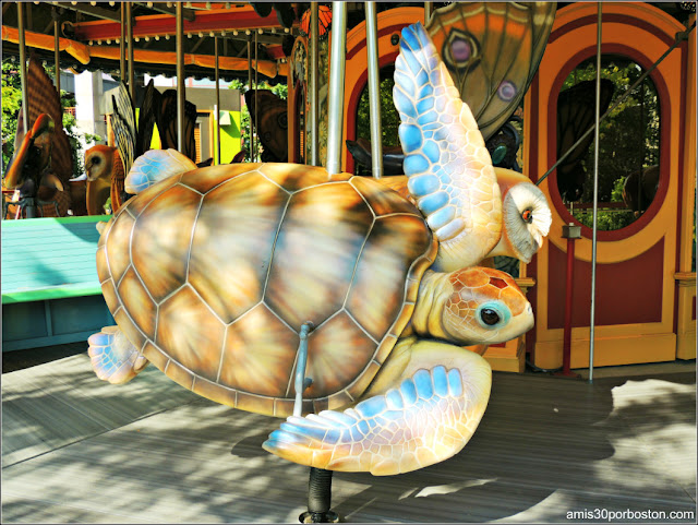 Tortuga de Mar Greenway Carrusel Boston