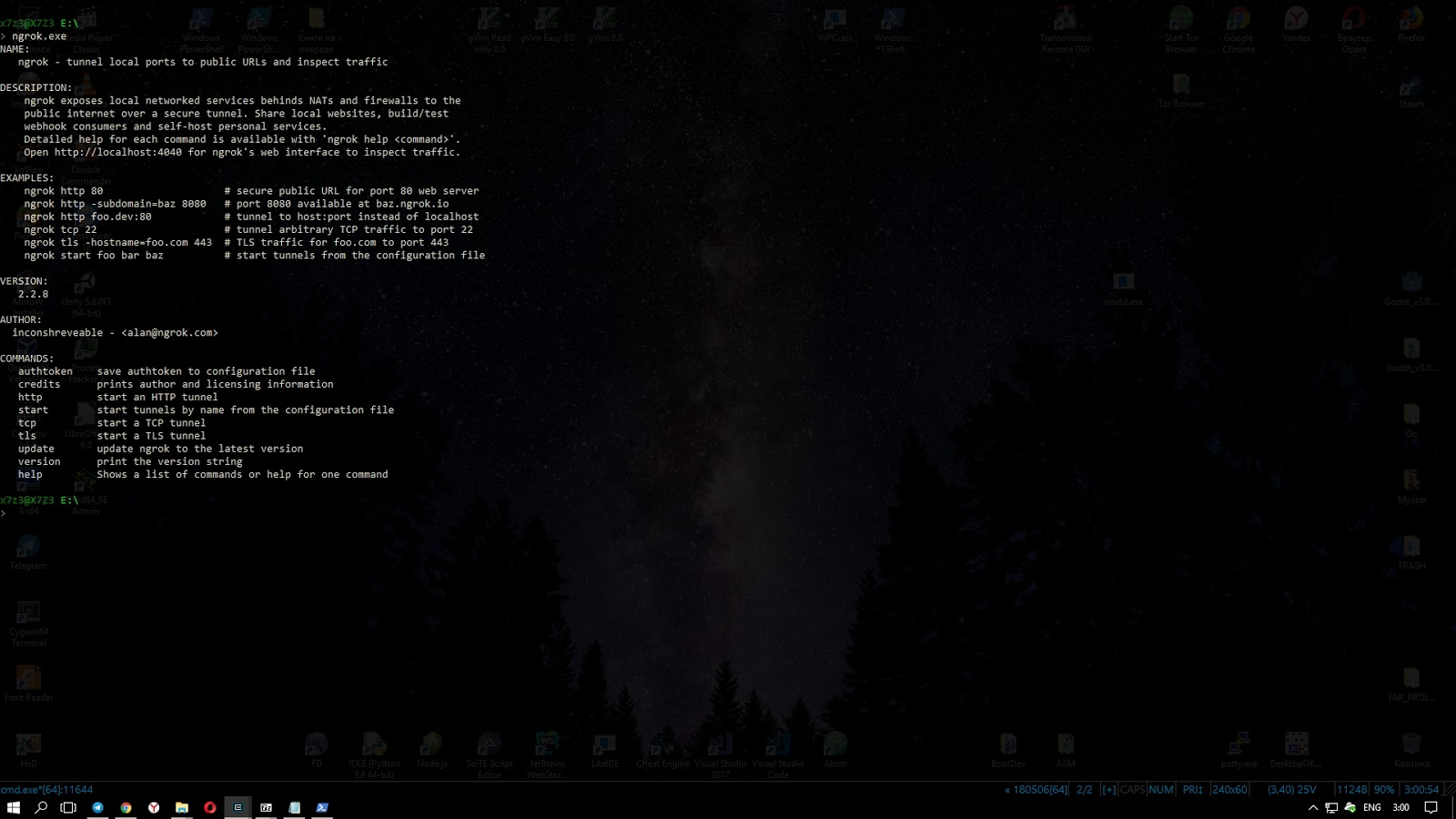 Ngrok - доступ к локальным портам через интернет - BootDev
