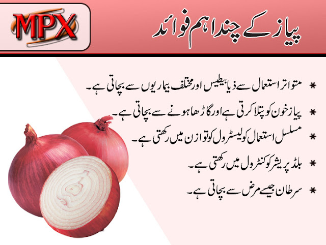 Health Benefits and Uses Of Onion in urdu