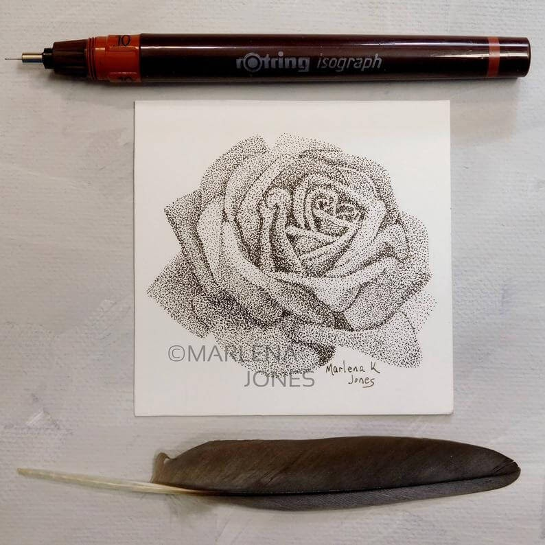 07-Rose-2-Marlena-Jones-www-designstack-co