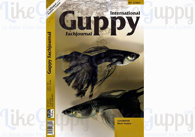 International-Guppy-Fachjournal-N-2-2014