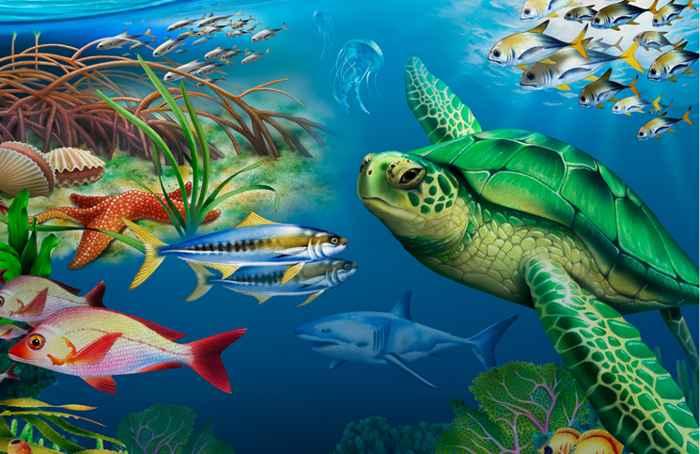 beneficios de los oceanos