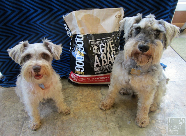 Dottie and Dibble with a bag of Grain Free Salmon DOGSFOOD