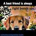 Ένας καλός φίλος!...