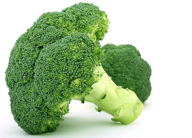 Brokoli Untuk Kecerdasan Otak Anak