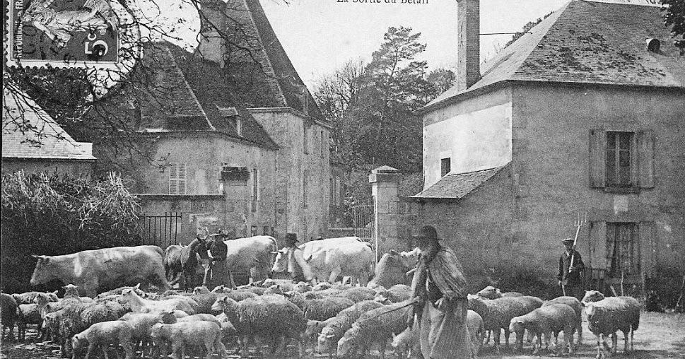 Geodaszner chronique la ni vre salon de l 39 agriculture - Qui a invente le fil a couper le beurre ...