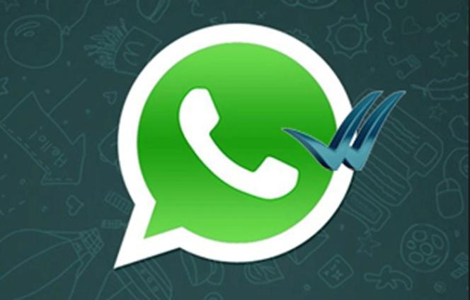 Porque Una Mujer Te Deja En Visto En Whatsapp O Facebook