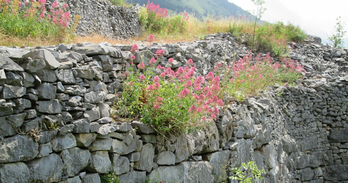 Raccontare un paese i miei giardini rocciosi 4 foto - Giardini rocciosi immagini ...