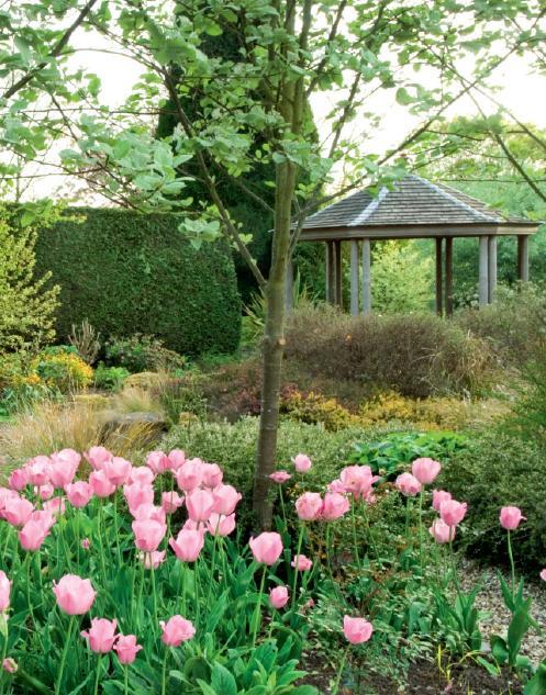 English Garden Ideas Designs Photograph