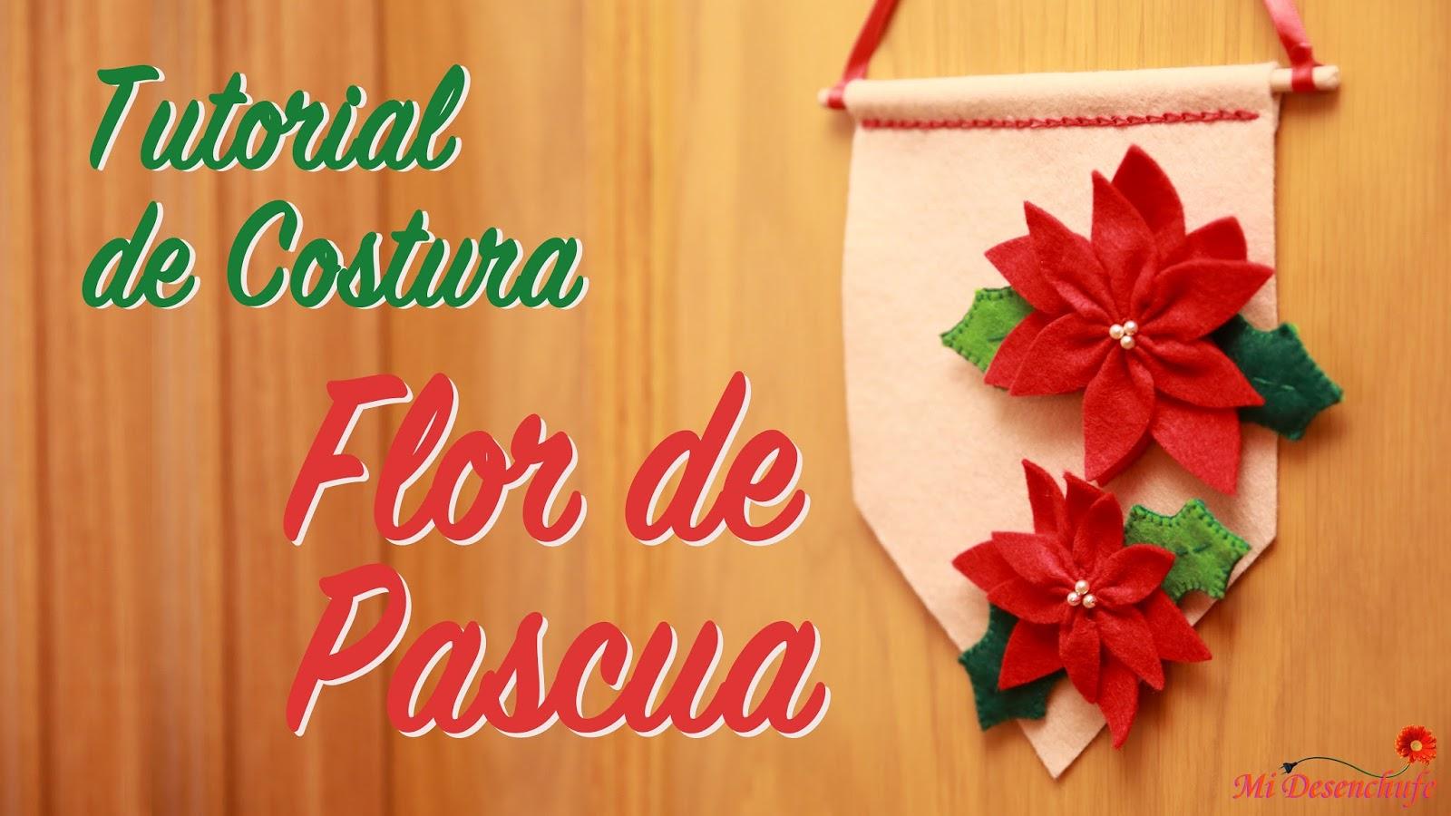 Mi desenchufe store flor de pascua poinsettia navidad - Que cuidados necesita la flor de pascua ...