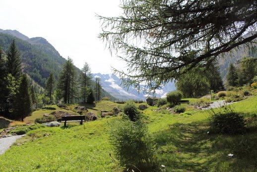 parco botanico alpino parco nazionale