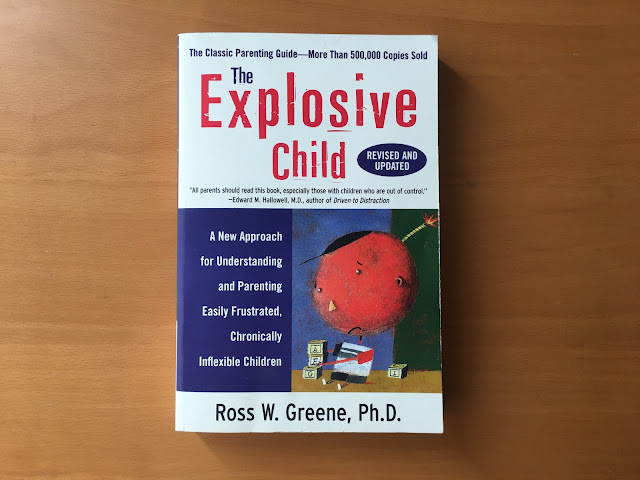 cover of the explosive child book