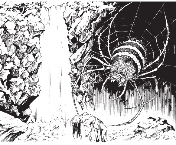 女郎 蜘蛛 妖怪