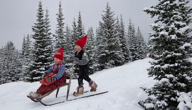 nordic elves in winter