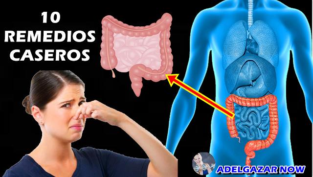 Cómo Controlar y Eliminar Los GASECILLOS Del INTESTINO GRUESO Con Éstos 10 REMEDIOS