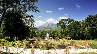 Domaine Emeraude à Morne Rouge- Parc Naturel Régional de la Martinique