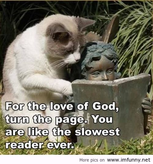 Funny animals and funny sayings ~ Funny images and Jokes