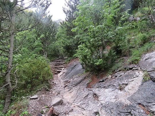 Szlak co raz częściej prowadzi po skałach.