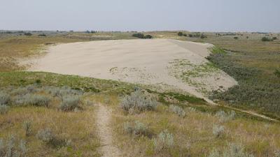 Sceptre, Saskatchewan, sandhills, natural area, sand dunes, Great Sandhills