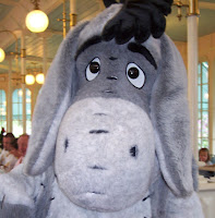 Eeyore Magic Kingdom Character