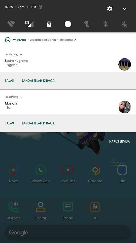 cara membaca pesan Whatsapp tanpa terlihat online tanpa aplikasi dan root 1