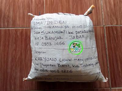 Benih pesana IMA / DEDEN Banjar, Jabar.  (Sesudah Packing)