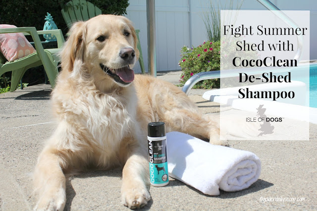3 Ways To Help Fight Summer Shedding