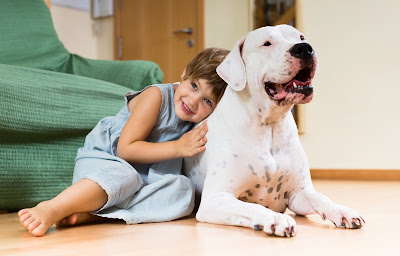 Pet Ownership Positively Affects Your Kids in More Ways Than One