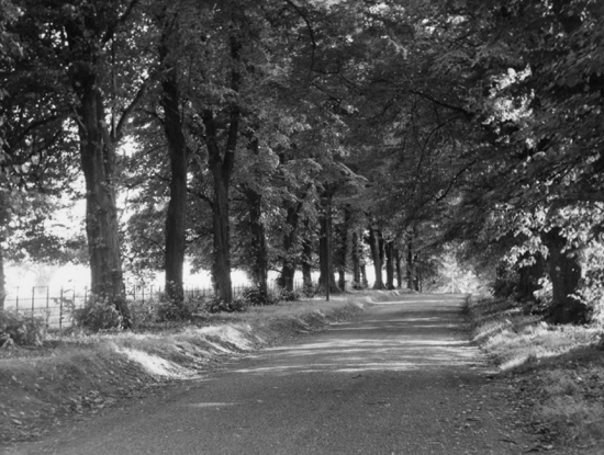 Photograph of North Mymms Church walk 1960s Image from G Mills