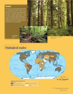 Apoyo Primaria Atlas de Geografía del Mundo 5to. Grado Capítulo 4 Lección 1 Forestal, Producción de Madera