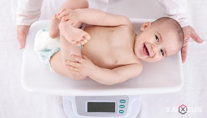 Fakta 1 - Berat pada janin 9 minggu terus bertambah