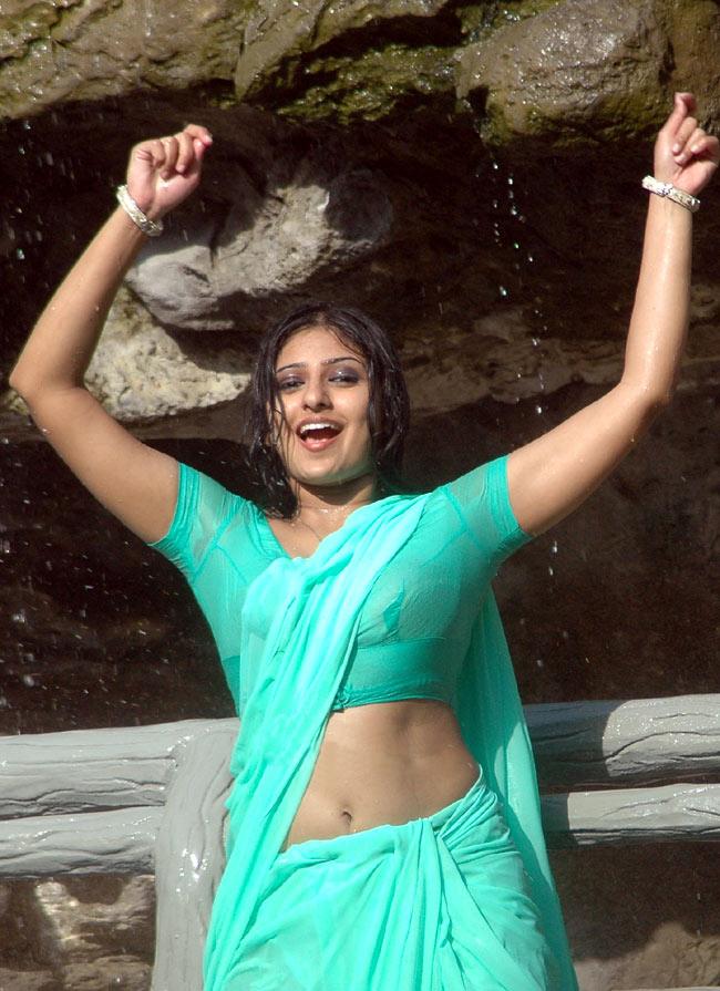 Wet South Indian Actress Pics  South Indian Actresses Pics-8502