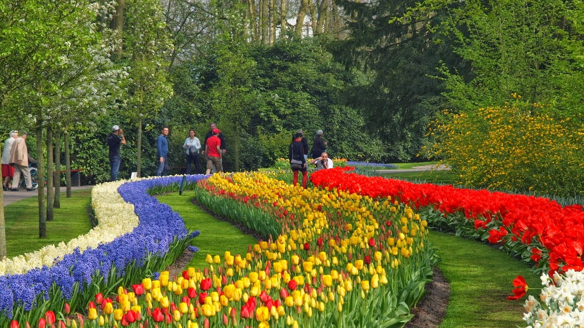 Spring break in Holland to see Keukenhof Park