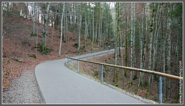 Camino hacia el Marienbrücke Baviera (Alemania)