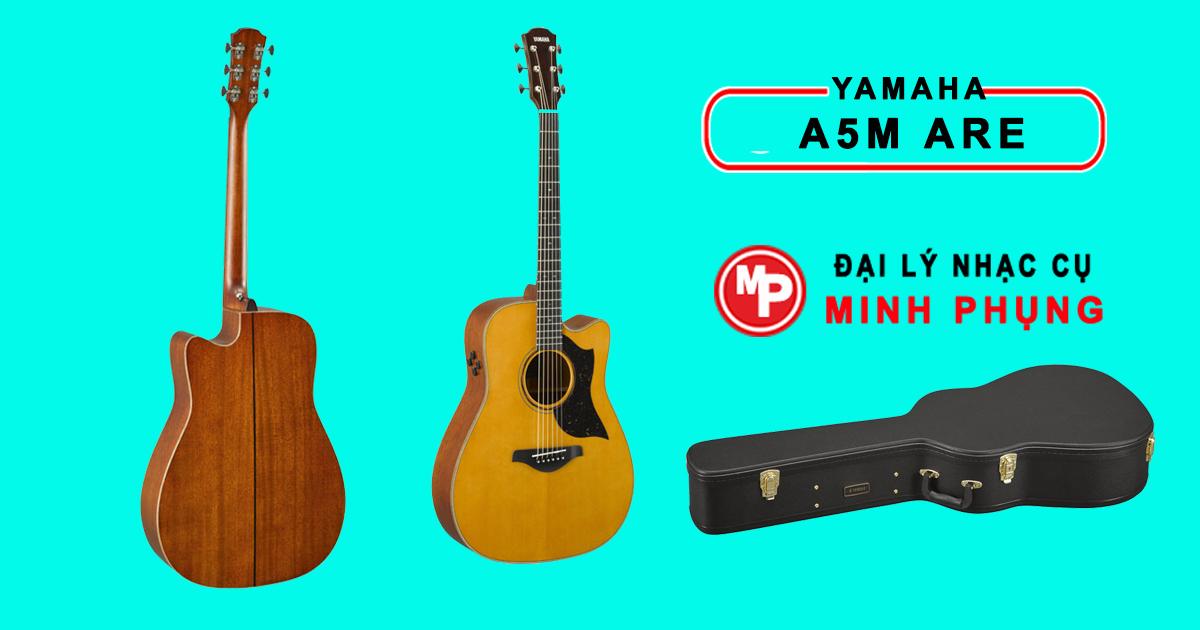 Đàn Guitar Yamaha Acoustic - Hàng Nhập Khẩu Chính Hãng