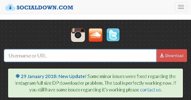 InstaDown website