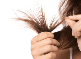 Heat Damaged Hair Symptoms