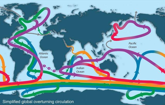 Wind-blown Antarctic sea ice helps drive ocean circulation