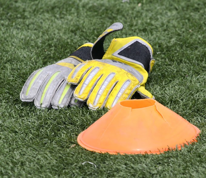 WFCCP   Goalkeeping Coach Required