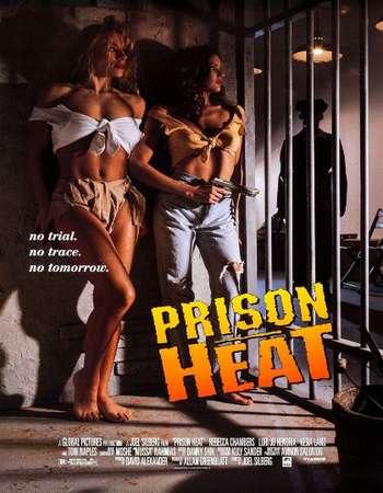 Poster Of Prison Heat 1993 Dual Audio 300MB DVDRip 480p - UNCUT HEVC Free Download Watch Online Worldfree4u